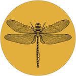 Muurcirkel 30 cm geel libelle
