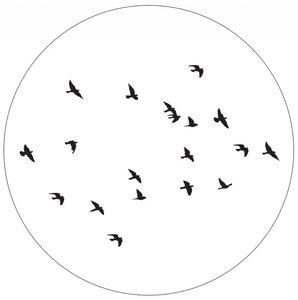Muurcirkel 30 cm wit birds